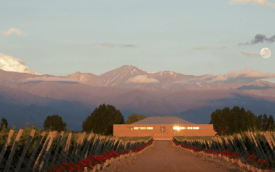 Vineyard Spotlight: Finca SOPHENIA – Wines of Argentina